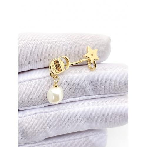 Christian Dior Earrings #861692