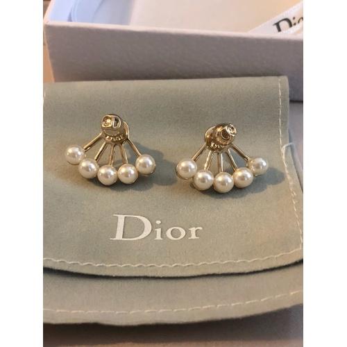 Christian Dior Earrings #861696