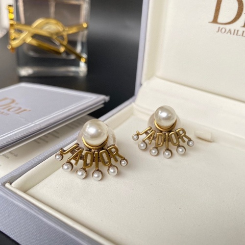Christian Dior Earrings #862773