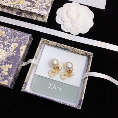 Christian Dior Earrings #862839