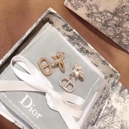 Christian Dior Earrings #863081
