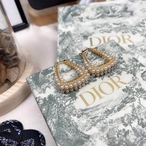 Christian Dior Earrings #863087