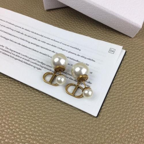 Christian Dior Earrings #863331