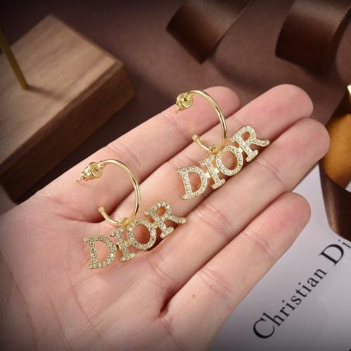 Christian Dior Earrings #863342