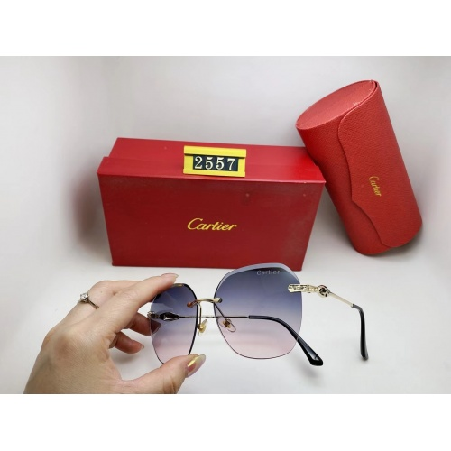 Cartier Fashion Sunglasses #864992