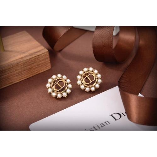 Christian Dior Earrings #865348