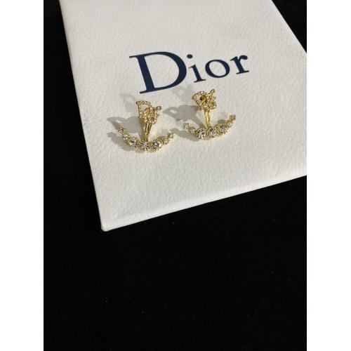 Christian Dior Earrings #865352