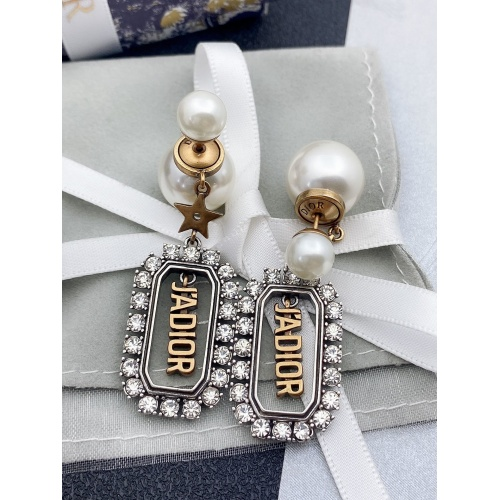 Christian Dior Earrings #865354