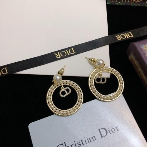 Christian Dior Earrings #865853