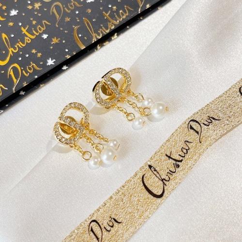 Christian Dior Earrings #865854