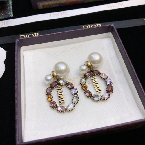 Christian Dior Earrings #871234