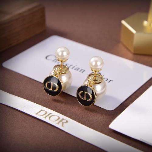 Christian Dior Earrings #871754
