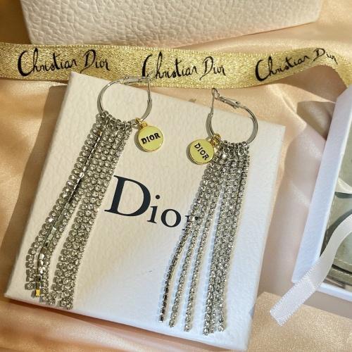 Christian Dior Earrings #872528