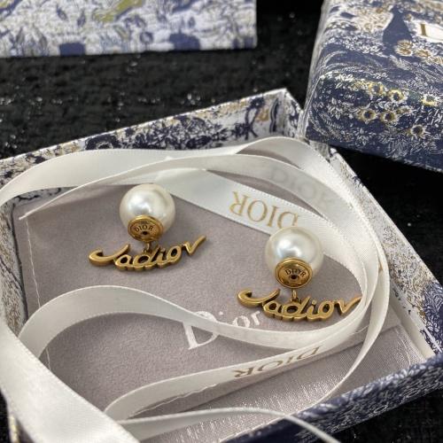 Christian Dior Earrings #872541