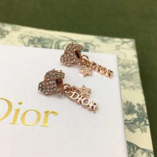 Christian Dior Earrings #873162