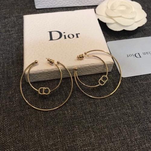 Christian Dior Earrings #873164
