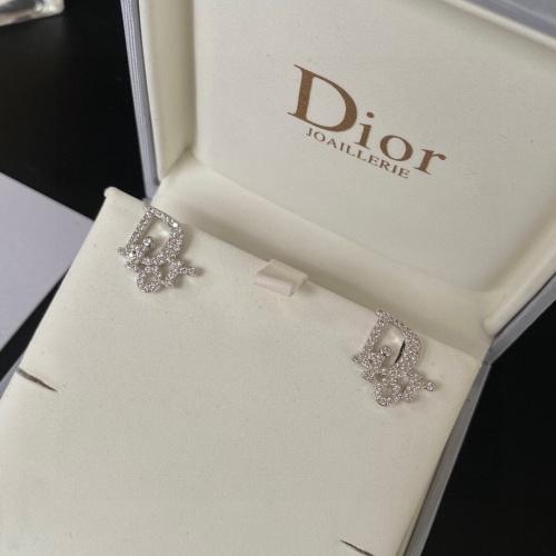 Christian Dior Earrings #873724
