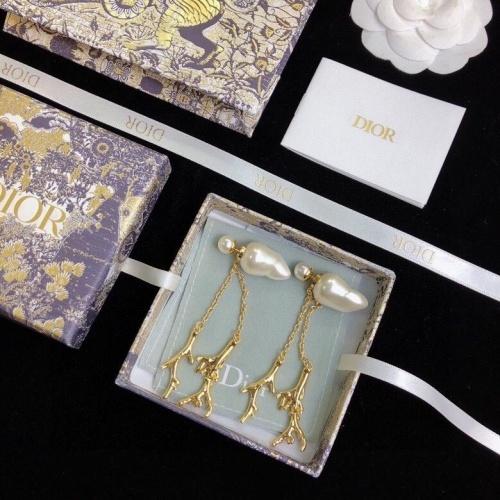 Christian Dior Earrings #874726