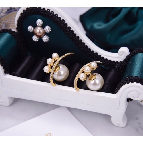 Christian Dior Earrings #875544