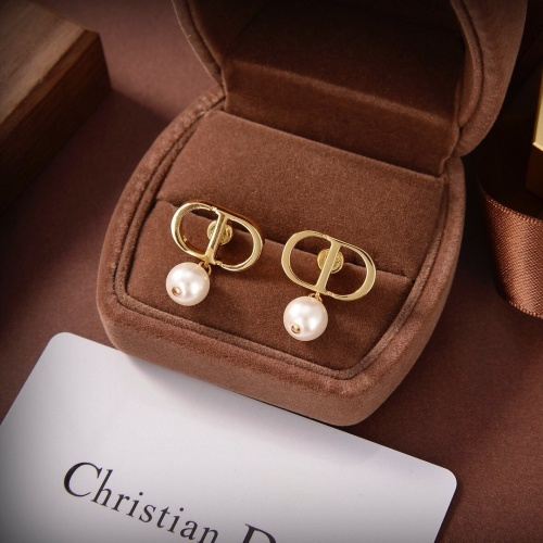 Christian Dior Earrings #877351