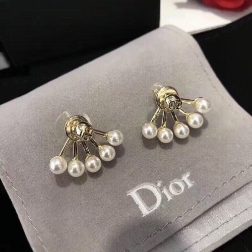 Christian Dior Earrings #877352