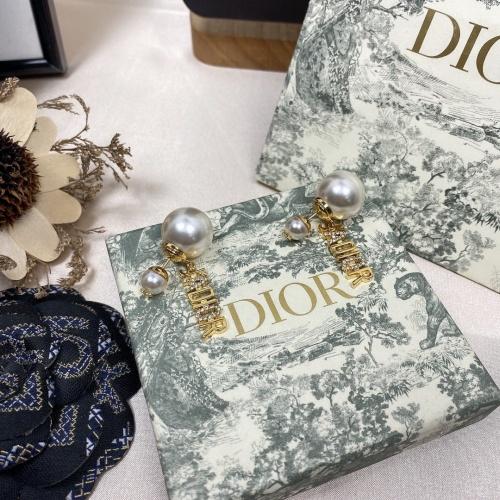 Christian Dior Earrings #878966