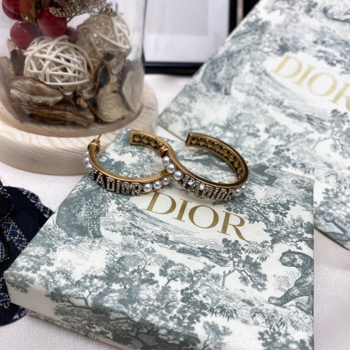 Christian Dior Earrings #879282
