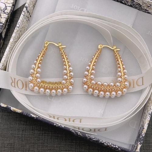Christian Dior Earrings For Men #880357