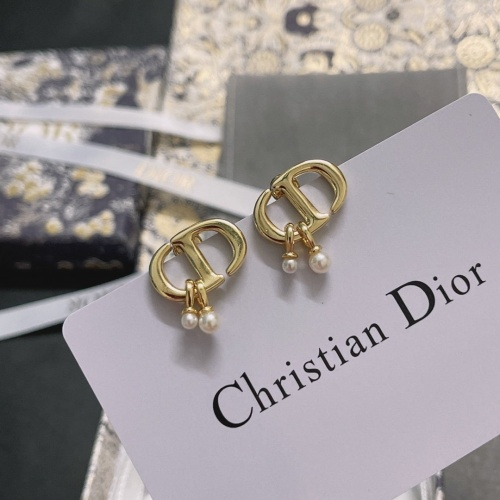 Christian Dior Earrings #880608