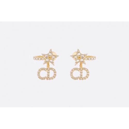 Christian Dior Earrings #880612