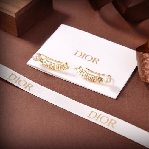 Christian Dior Earrings #880645