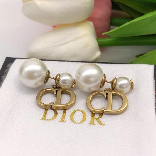 Christian Dior Earrings #881098