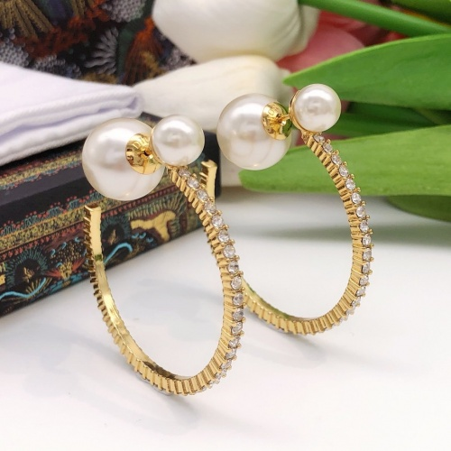 Christian Dior Earrings #881477
