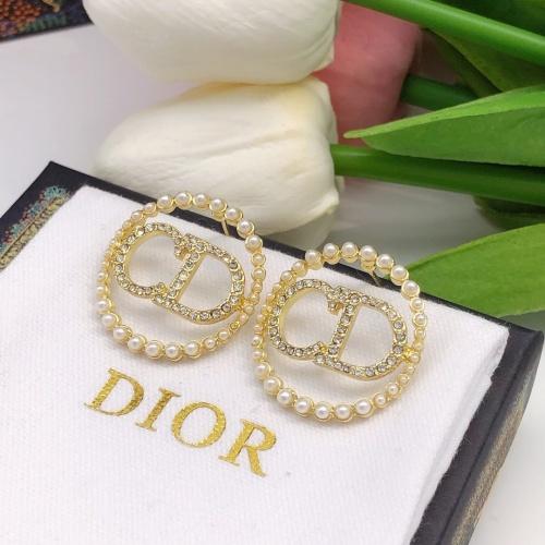 Christian Dior Earrings #881548