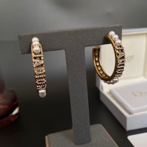 Christian Dior Earrings #882063