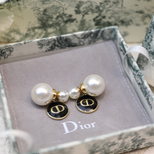 Christian Dior Earrings #883751
