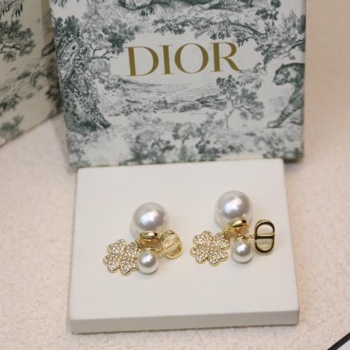 Christian Dior Earrings #883755