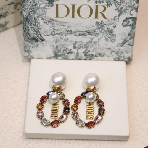Christian Dior Earrings #883756