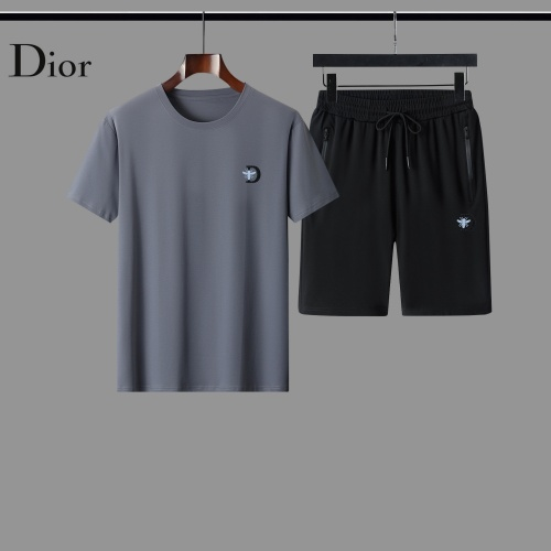 Christian Dior Tracksuits Short Sleeved For Men #884494