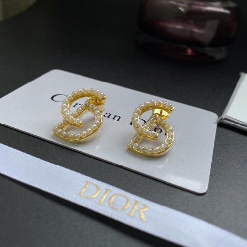 Christian Dior Earrings #886067