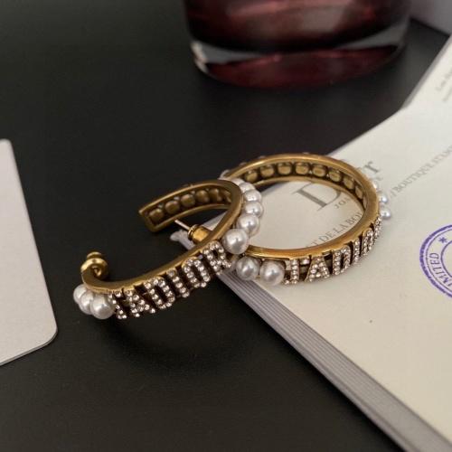 Christian Dior Earrings #886069