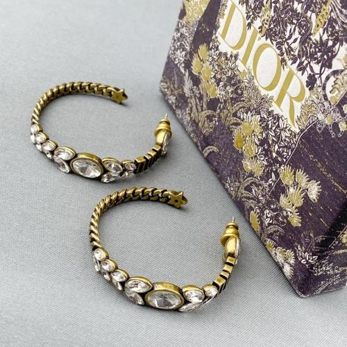 Christian Dior Earrings #886436