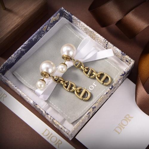 Christian Dior Earrings #886734
