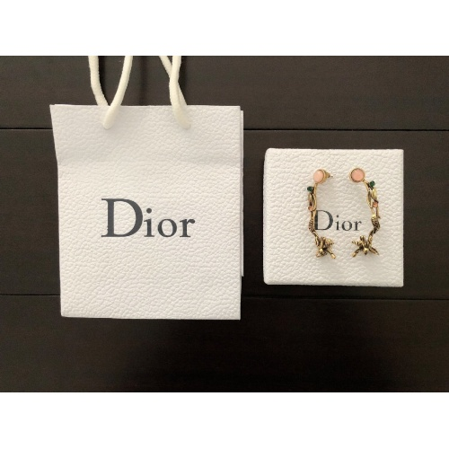 Christian Dior Earrings #887288