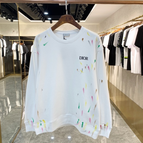 Christian Dior Hoodies Long Sleeved For Unisex #891314