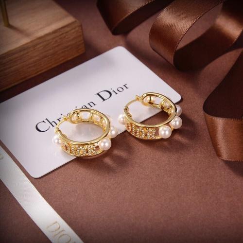 Christian Dior Earrings #891857