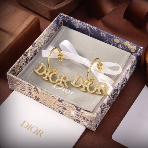 Christian Dior Earrings #891859