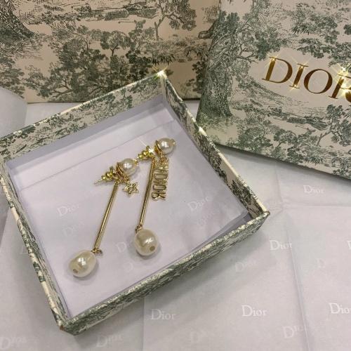 Christian Dior Earrings #892354