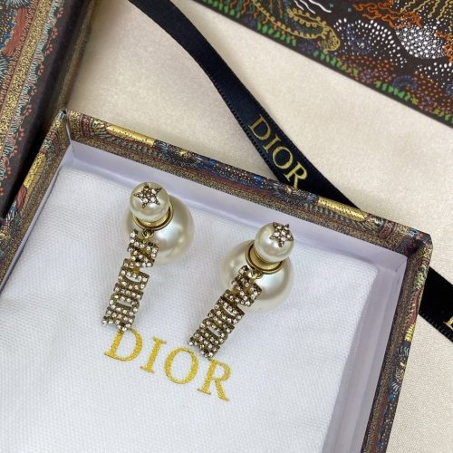 Christian Dior Earrings #892355