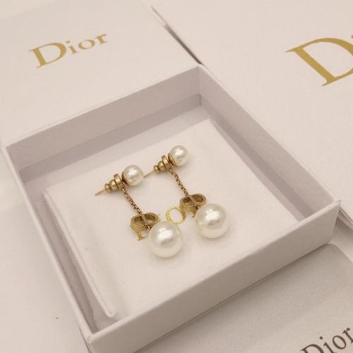 Christian Dior Earrings #892606